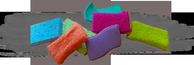 Conventional Sponges